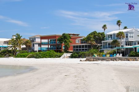 Image of four luxury beach homes that would be typical in Belleair Beach Florida. The homes are multicolored with palm trees and are on the sand next to the gulf of mexico