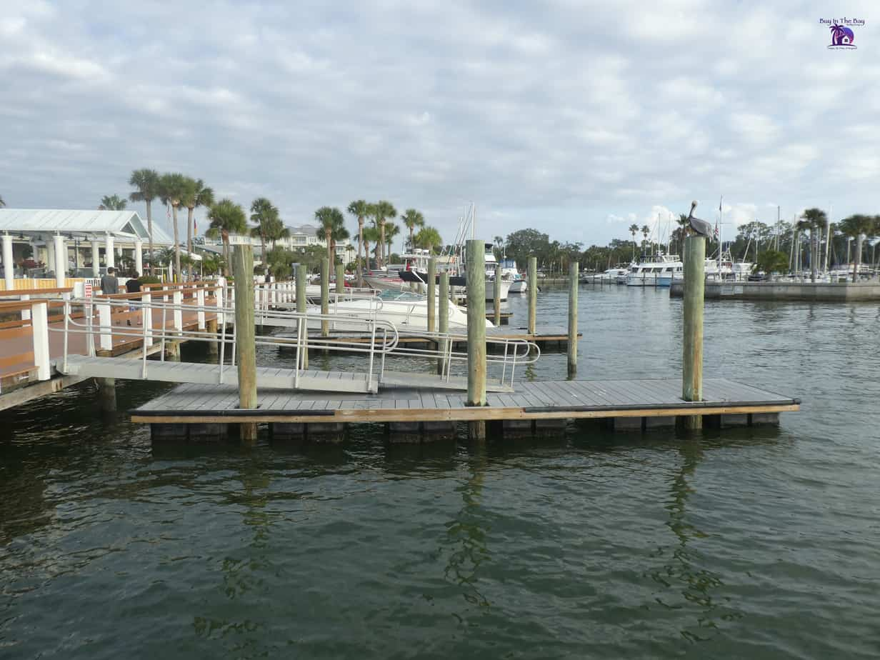 boats in water in dunedin florida with dock and palm trees